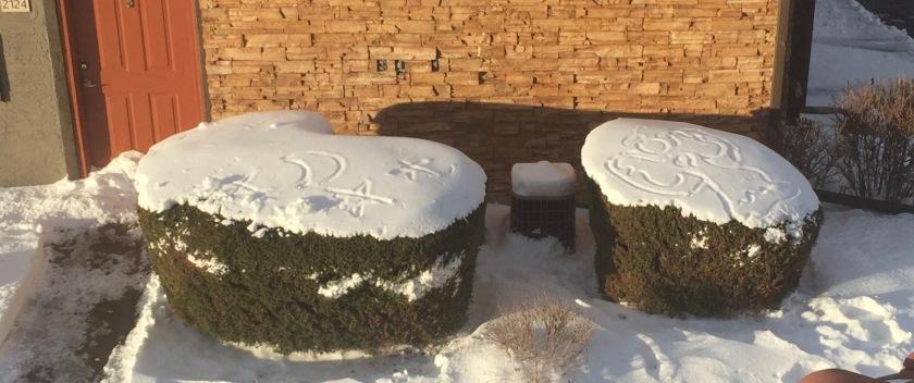 2015-12-16 Snow Art