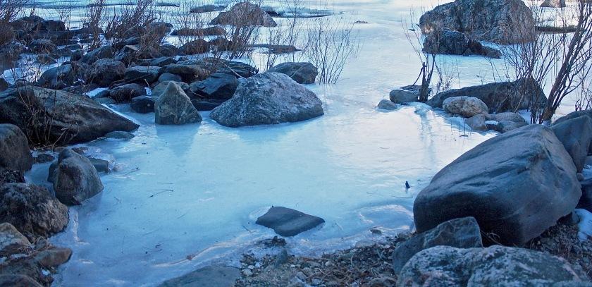 2016-12-23-ouzel-cache-la-poudre-river-01