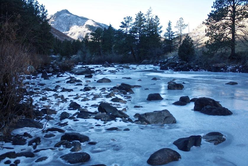 2016-12-23-ouzel-cache-la-poudre-river-05