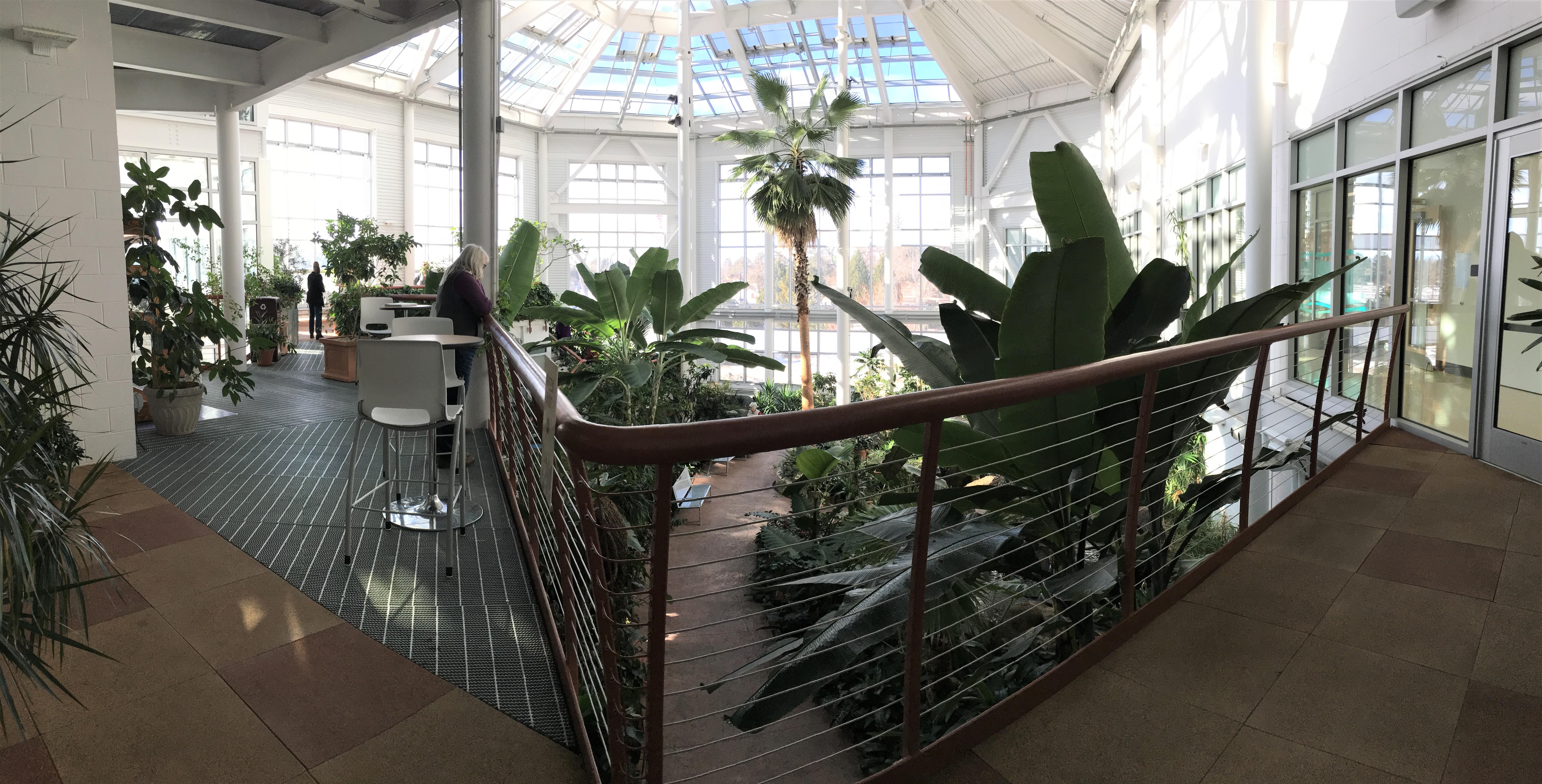 2019-01-26 cbg conservatory 10