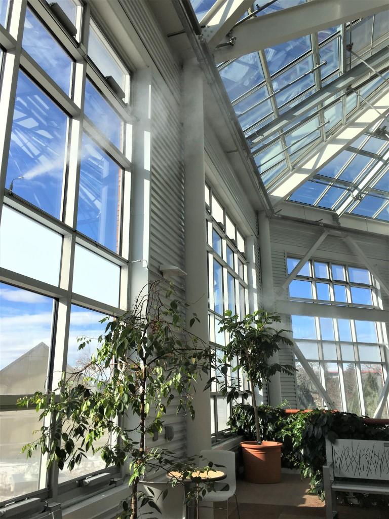 2019-01-26 cbg conservatory 11