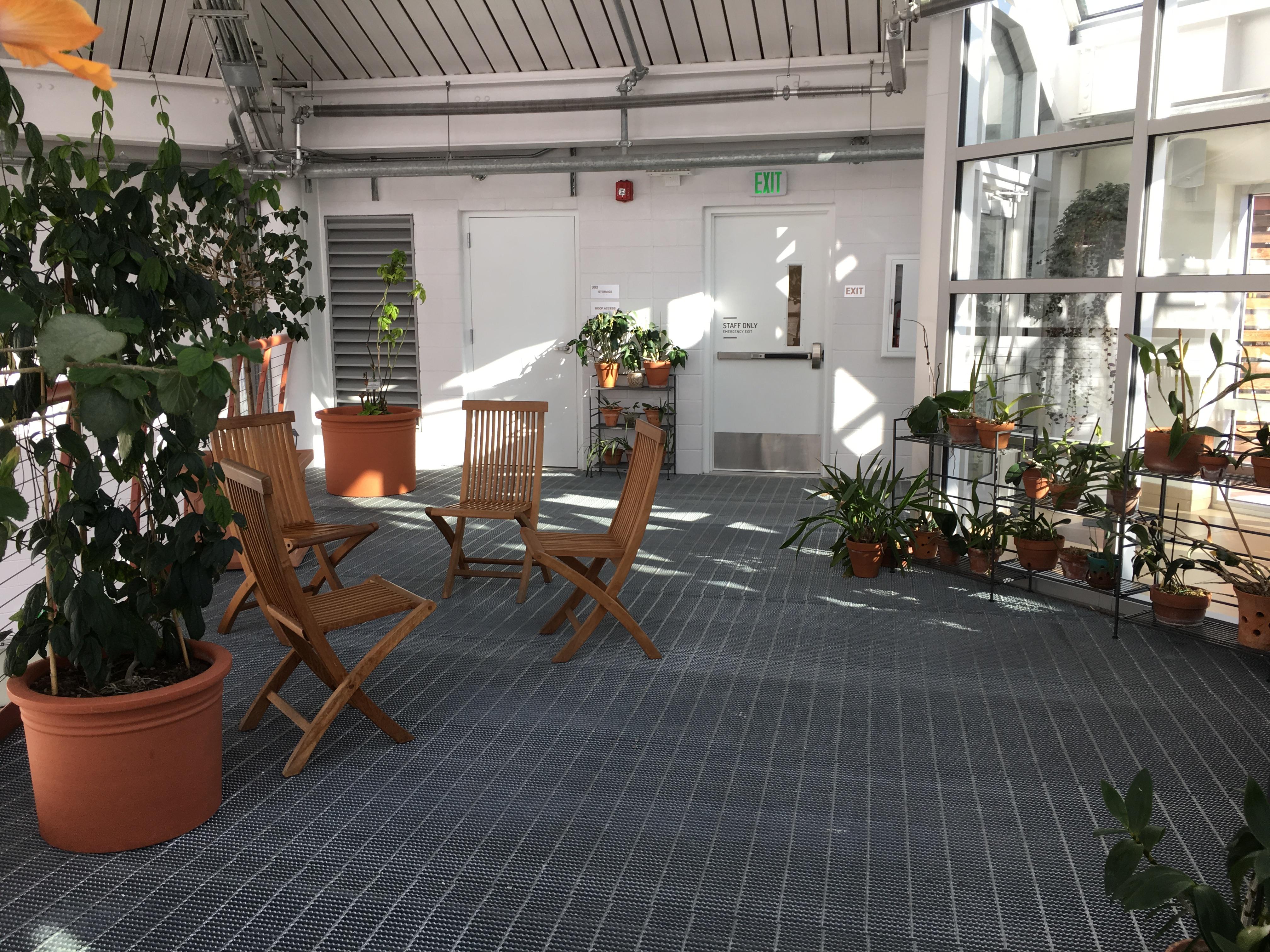 2019-01-26 cbg conservatory 20
