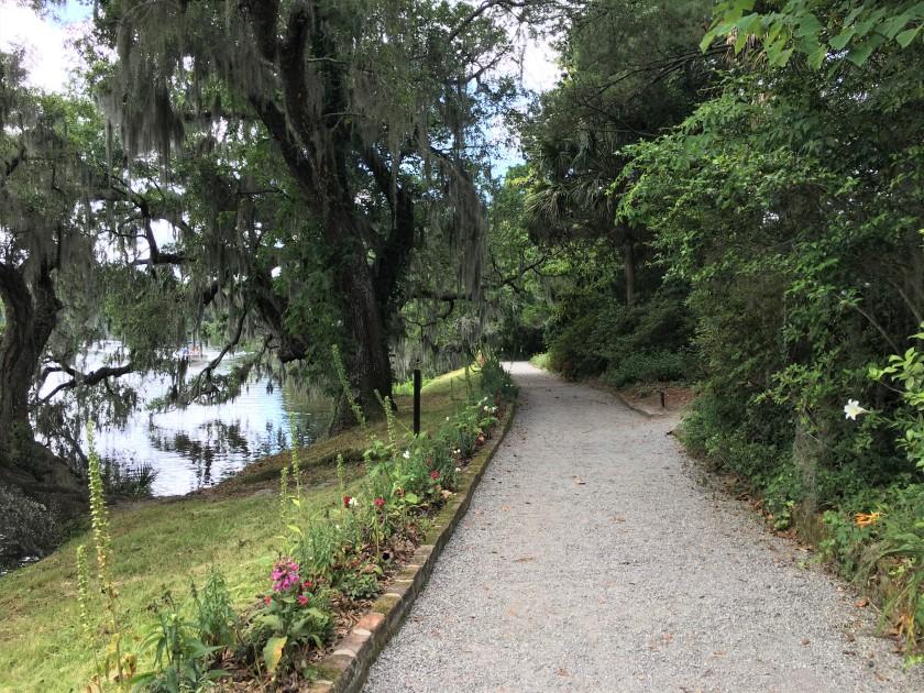 2019-05-19 Magnolia 30
